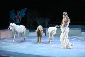 Новогоднее цирковое шоу Леонида и Дарьи Костюк «Тринадцать месяцев»