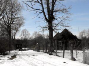 Деревня Хвоёнка