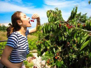 Ольга Куриленко, здоровый образ жизни, правильное питание