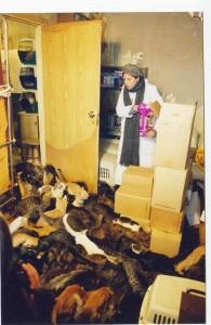 Марина Хлебникова в приюте для кошек