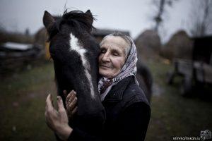 Конь и бабушка