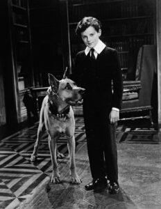 Юный лорд Фаунтлерой (Little Lord Fauntleroy), 1936 год