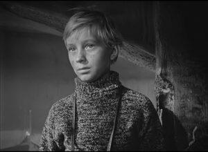 Кадр из фильма «Иваново детство», рецензия