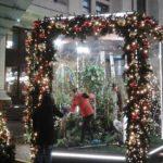 Москва. Новогодние стеклянные павильоны