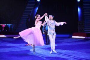 Программа «Цирка Дарьи Костюк» «ВСЕ КРАСКИ МИРА!»