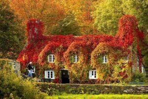 Англия, осень
