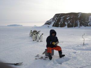 Пингвины и Ким