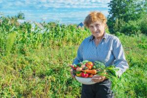 Овощи, огорода